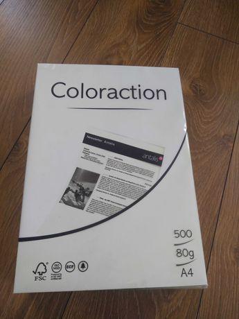 Papier do drukarki kolorowy zielony Coloration 80g