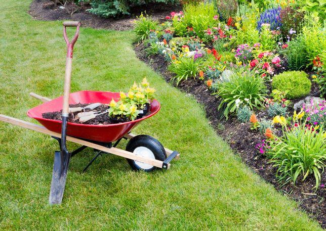 Jardins e terrenos