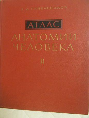 Atlas anatomii człowieka Sinielnikov tom II