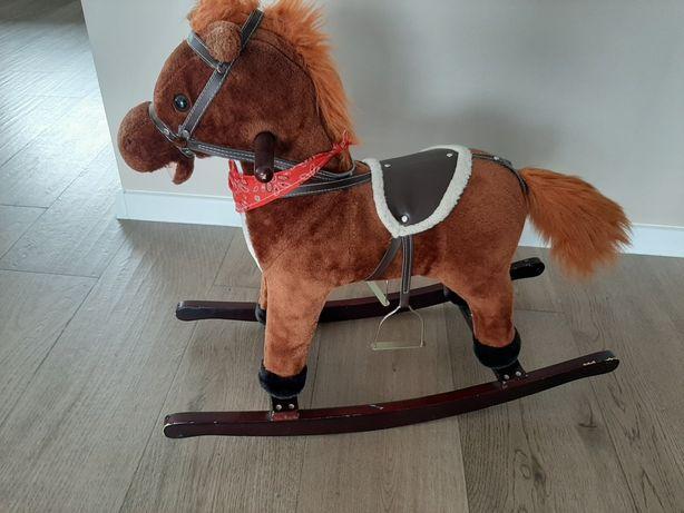Koń na biegunach.