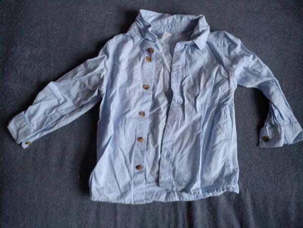 Koszule H&M, Next