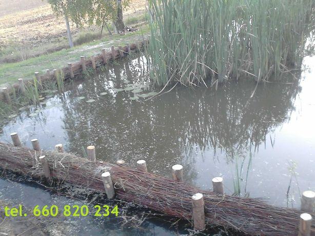 Faszynowanie stawów rowów brzegów oczek wodnych