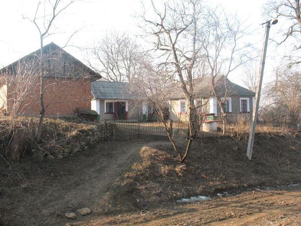 Продаю будинок з садом і ділянкою на 38 соток