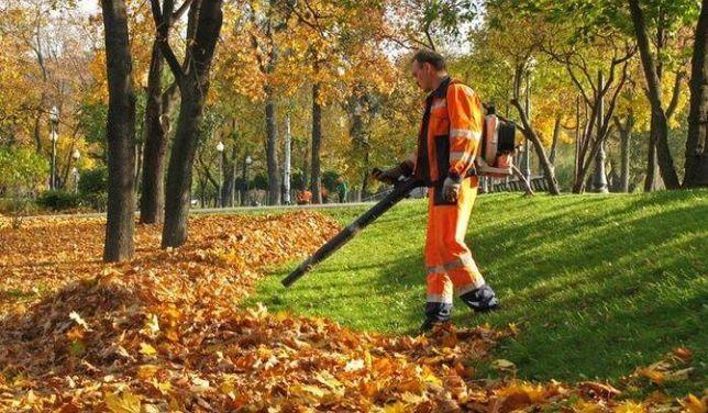 Уборка листьев, Благоустройство участка, Уборка территории