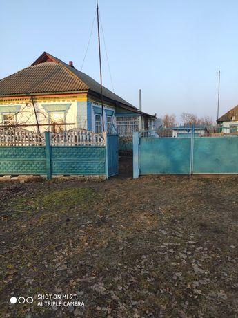 Будинок з 2-ма дворами і 2-ма городами , с. Красне (біля Згурівки)