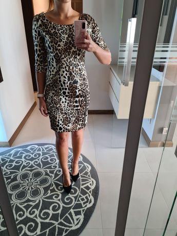 Sukienka e panterke z rozporkiem.