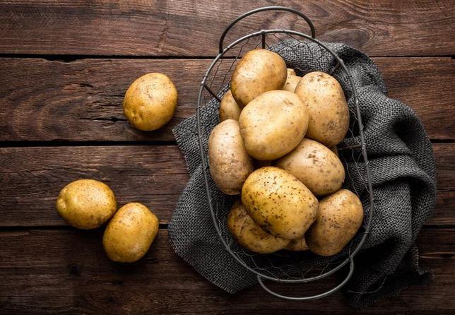 Ziemniaki duża ilość