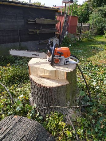 Wycinka drzew i krzewów, koszenie trawników, prace ogrodowe