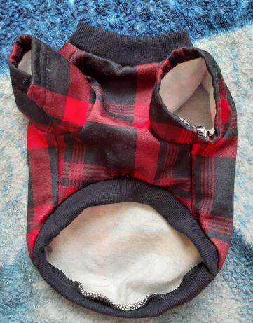 Ubranko bluza dla psa