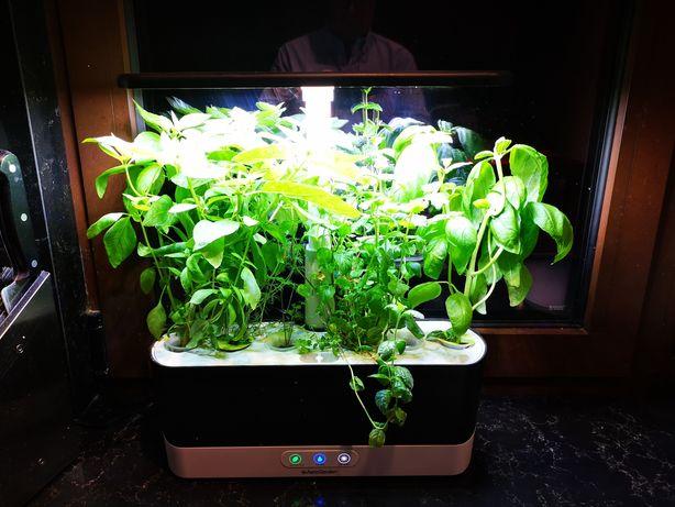 Cultivador Aerogarden 6