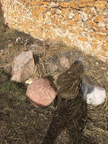 Kamienie do skalniaka
