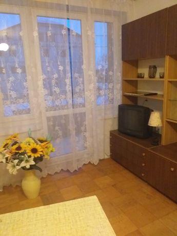 Mieszkanie dwupokojowe (salon+sypialnia) do wynajęcia od zaraz.