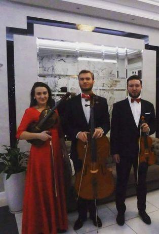Oprawa muzyczna ślub, uroczystości, kwartet, trio, duet, skrzypce solo