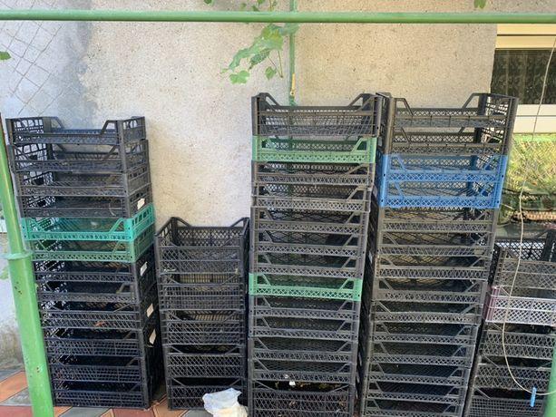 Ящики пластиковые плотные в хорошем состоянии бу.