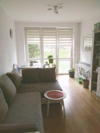 3 pokojowe przytulne mieszkanie