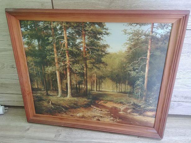 Obraz krajobraz 57cmx47cm
