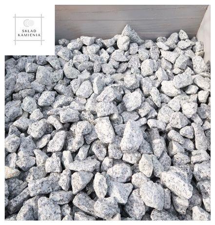 Kamień granitowy dalmatyńczyk 16-22