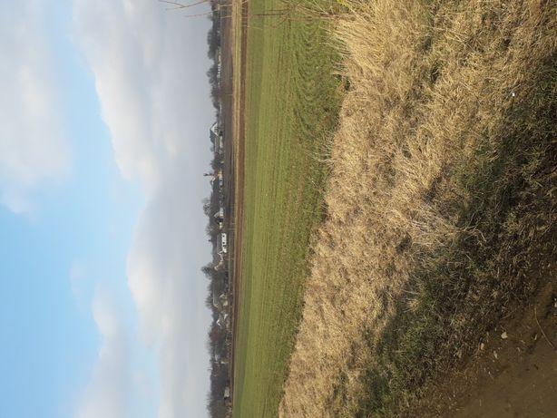 Приватизована земельна ділянка.