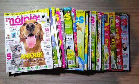 """Magazyn """"Mój pies i kot"""", gazetki i plakaty + dodatki"""