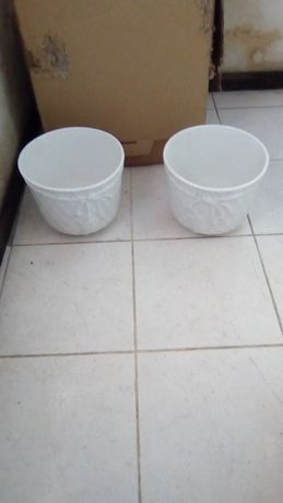 Dois vasos brancos