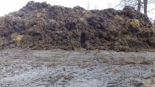 Obornik bydlecy nawóz kompost