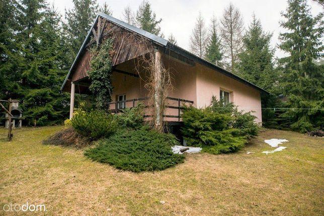 Dom zaledwie 250 M od jeziora i przy lesie!