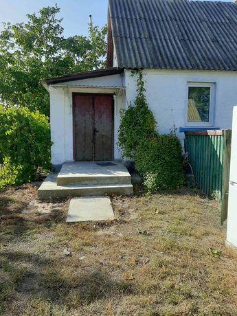 Продам будинок  в селі Лосятин Васильківського  району  Київської  обл