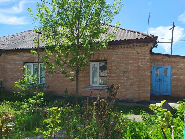 Продам дом в Гайвороне