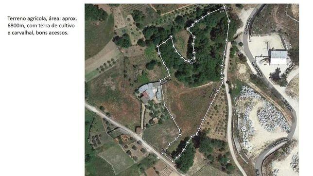 Terreno agrícola com carvalhos  em Sátão - Silvã de Baixo