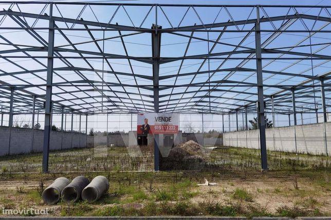 Terreno - Armazém - Pavilhão, Zona Industrial da Palhaça