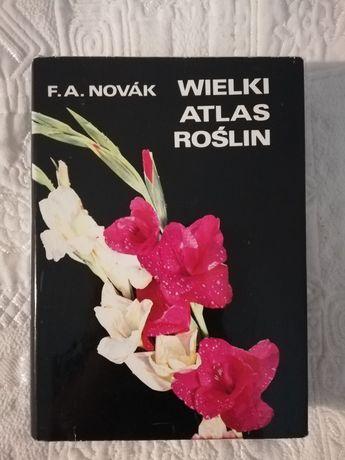 Wielki atlas roślin, F. A. Novak