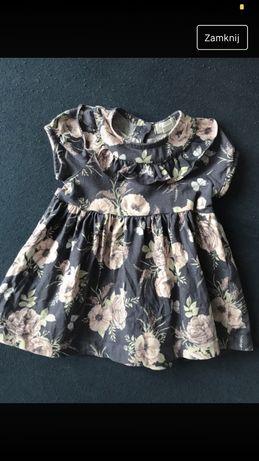 Sukienka Newbie tomiar 56