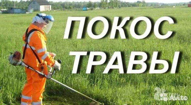 Покос травы сорняков бензокосой (триммером)