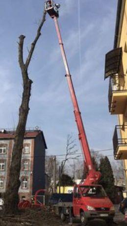 Wycinka drzew ,przycinka gałęzi z podnośnika