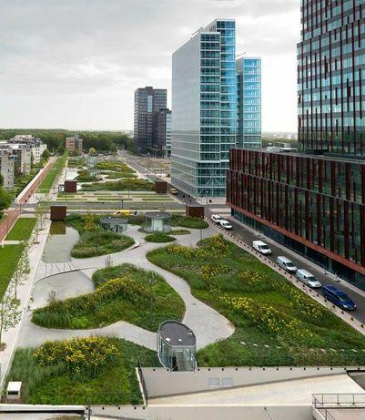 Озеленение жилищных комплексов и бизнес-центров. Новейшие тенденции