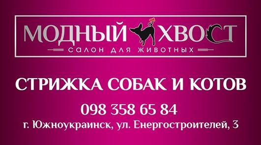 Стрижка котов и собак,груминг,триминг в Южноукраинске