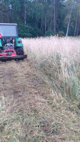 Koszenie trawy  porządkowanie terenu wycinka drzew