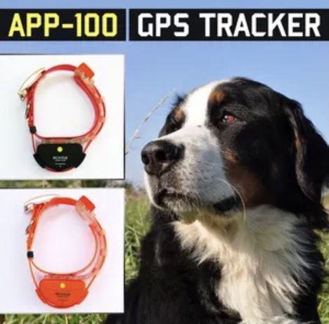 Американский USA GPS трекер hunter app100 для собак трекер tk911 tk909