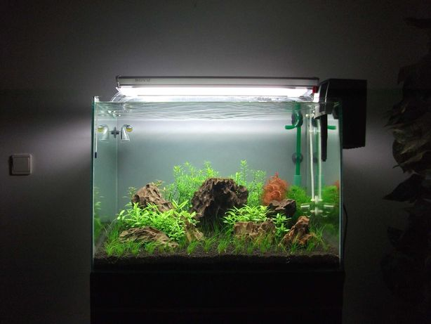 Aquário + Móvel + Iluminação 130 litros 65x45x45