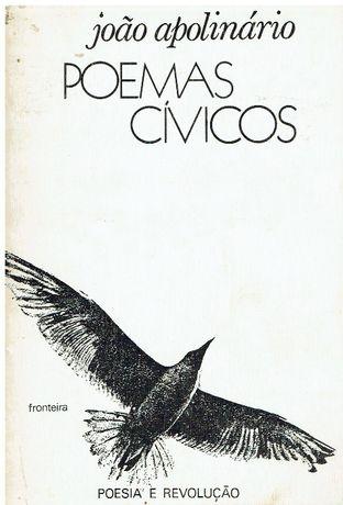 7420 - Literatura - Livros de João Apolinário ( Vários)