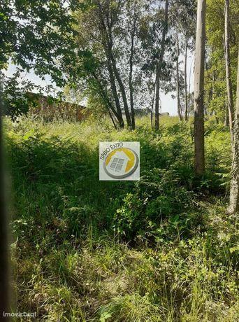 Terreno em Argoncilhe, concelho de Santa Maria Feira