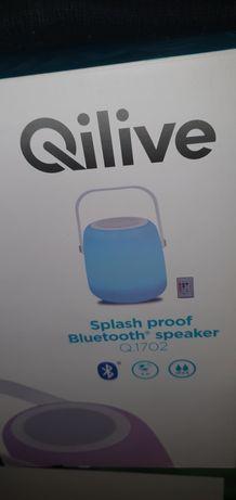 Głośnik BT Qilive