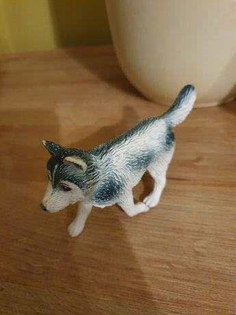 Siberian Husky ( Husky Syberyjski) - figurka dla miłośników rasy