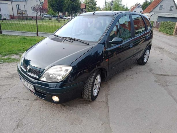 Renault scenic - Lakier kameleon - zero rdzy i korozji