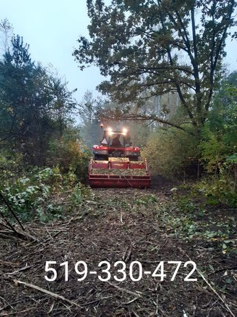 Mulczer lesny wycinka drzew rekultywacja czyszczenie działek terenu