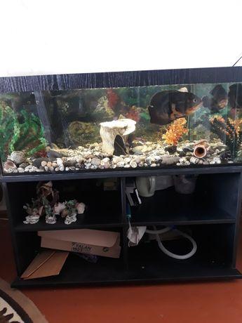Продам аквариум со всеми комплектующими и рыбками