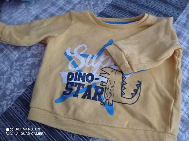 Bluza chłopięca 68 Pepco Dinozaur