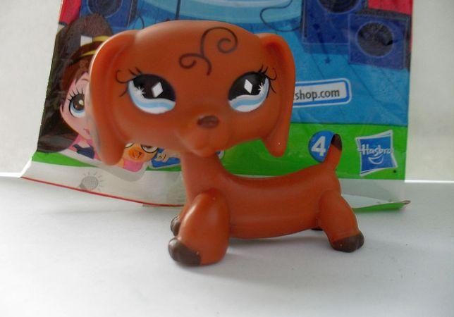 Littlest Pet Shop Lps Figurka Piesek Jamnik Pies