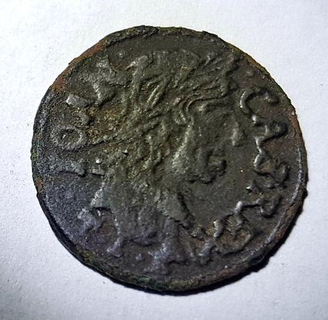 Szeląg koronny 1664 rok