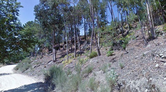 Terreno Rústico - Vale do Covo - Folhada - Marco de Canaveses